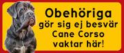 Cane Corso vaktar här 3