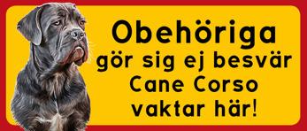 Cane Corso vaktar här 3 -
