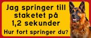 Skylt Schäfer med text: Jag springer till staketet på 1,2 sek