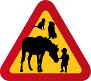 Hund, häst, katt & litet barn med hand på mule