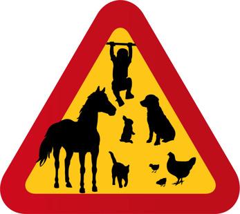 Barn, pojke, hund, häst, kanin, katt, höns