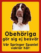 Obehöriga göre sig ej besvär - Vår Springer Spaniel vaktar här med porträtt