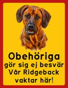Obehöriga göre sig ej besvär - Vår Ridgeback vaktar här med porträtt