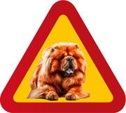Varningsskylt Chow Chow