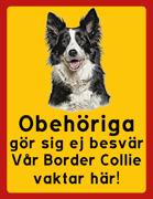 Obehöriga göre sig ej besvär - Vår Border Collie vaktar här med porträtt