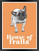 Poster House of fralla orange