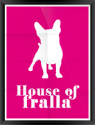 Poster House of fralla pink