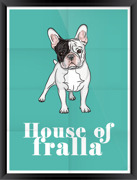 Poster House of fralla turkos