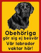 Obehöriga göre sig ej besvär - Vår Labrador vaktar här med porträtt