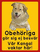Obehöriga göre sig ej besvär - Vår Kangal vaktar här med porträtt