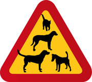 Tre hundar & en katt