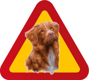 Varningsskylt Hund Tollare porträtt 2