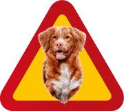 Varningsskylt Hund Tollare porträtt 3