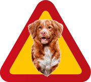 Varningsskylt Hund Tollare porträtt 4