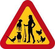 Jägare (kvinna) hund, höns, fasan, myskanka, får