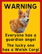 Warning, everyone has a guardian angel, the lucky one has a Welsh Corgi