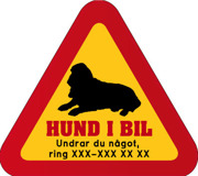 Dekal - Hund i bil med mobilnummer 82