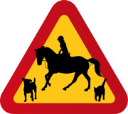 Hund, häst med ryttare & katt