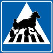 Övergångsställe Travhäst