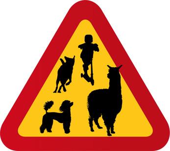 Alpacka, barn på kickbike, pudel och lekande hund