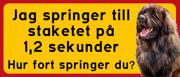 Skylt Leonberger med text: Jag springer till staketet på 1,2 sek