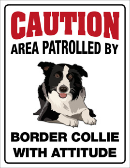 Caution, area patrolled by Border Collie with attitude