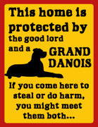 This home is  protected by  the good lord and a Grand Danois