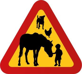 Hund, häst, höna & litet barn med hand på mule
