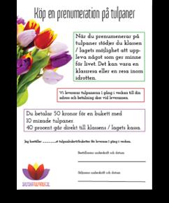Prenumerera på tulpaner