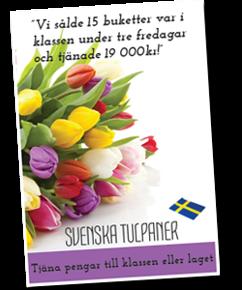 Svenska tulpaner