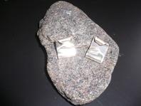 Örhängen Silver 450kr