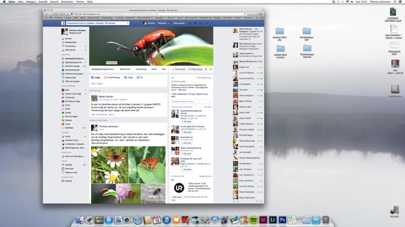 """Med Facebooksidan """"Intressanta fynd av insekter i Sverige"""" får du hjälp med artbestämning"""
