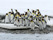 Antarktis 2012 Kungspingviner