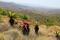 SYDAFRIKA 2014 Zwaziland I 150 dpi