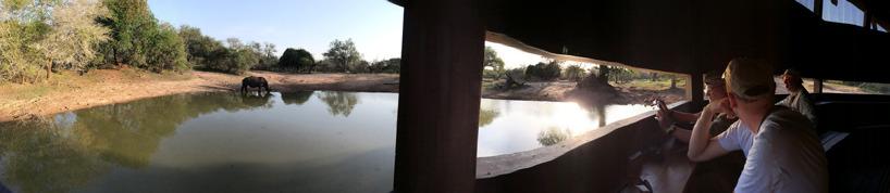 Vattenhålet i Mkuze Game Reserve, panoramabild: Jola Johnsson