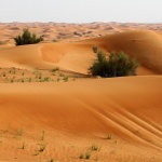 DUBAI 2015 Sandöken I