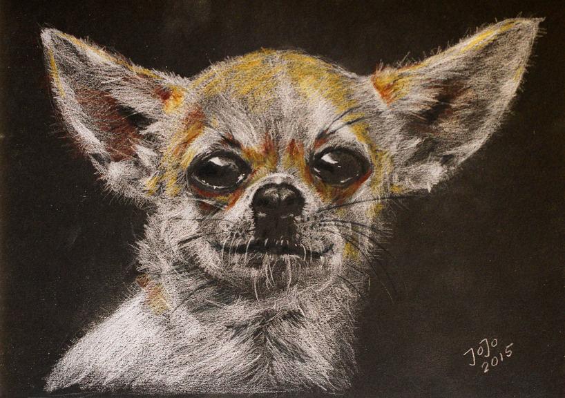 Chihuahuafröken Tyra, vit krita på svart kartong, A4-format