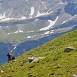 ÖSTERRIKE 2015 Smörbollar på alpäng 150 dpi