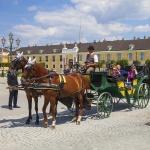ÖSTERRIKE 2015 Schönbrunn hästar 150 dpi