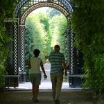 ÖSTERRIKE 2015 Schönbrunn slott parken 150 dpi