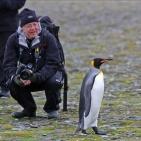 Antarktis 2012 Resenär och pingvin