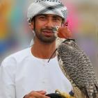 DUBAI 2015 Falkeneraren med slagfalk