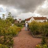 Hovdala Slottsträdgården II 150920