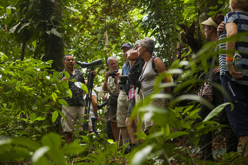 Lokalguiden Hugo lär oss: Primär regnskog 19%, sekundär regnskog 30%.