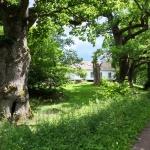 Mölleröds kungsgård