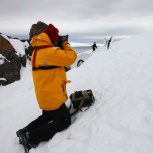 Antarktis 2012 Fotografera pingviner kopia