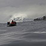 Antarktis 2012 Havsis VI kopia