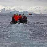 Antarktis 2012 Havsis VII kopia