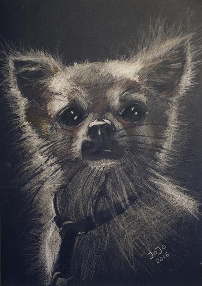 Hund I (2016)