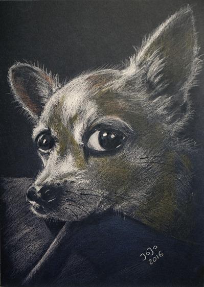 Hund II (2016)